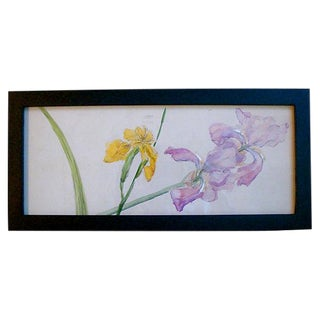 Spring Iris Floral Watercolor Painting