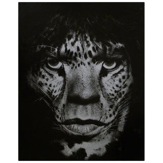 Albert Watson Portrait of Mick Jagger as Jaguar