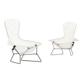 Pair Of Bertoia Bird Chairs