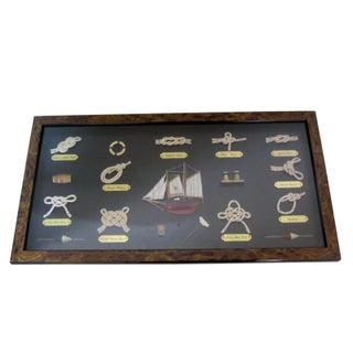 Nautical Shadow Box in Burlwood Frame
