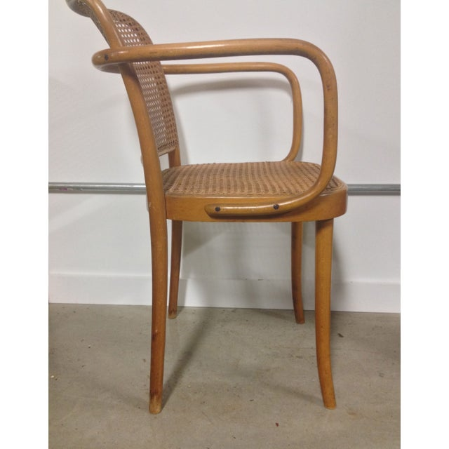 Thonet Mid-Century Bentwood and Cane Armchair - Image 3 of 8