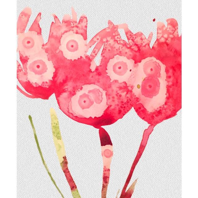 Framed Botanical Print Pink - Image 3 of 3