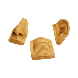 Vintage Plastic Ear, Nose & Mouth Molds - Set of 3