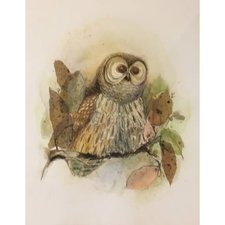 "Barbara Weldon ""Barred Owl"" Painting"
