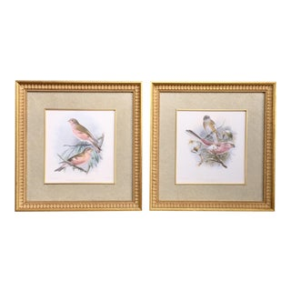 John Gerrard Keulemans Framed Bird Lithographs - A Pair