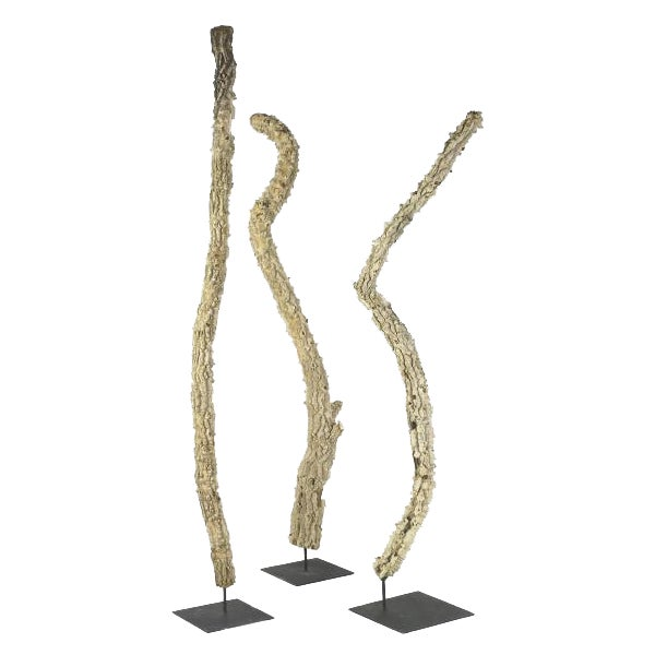 Image of Organic Spiny Wood Sculptures - Set of 3