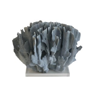 Large Blue Coral on Lucite Base