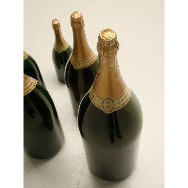 Set of 6 Nicolas Feuillatte Champagne Bottle Store Props - Image 3 of 10