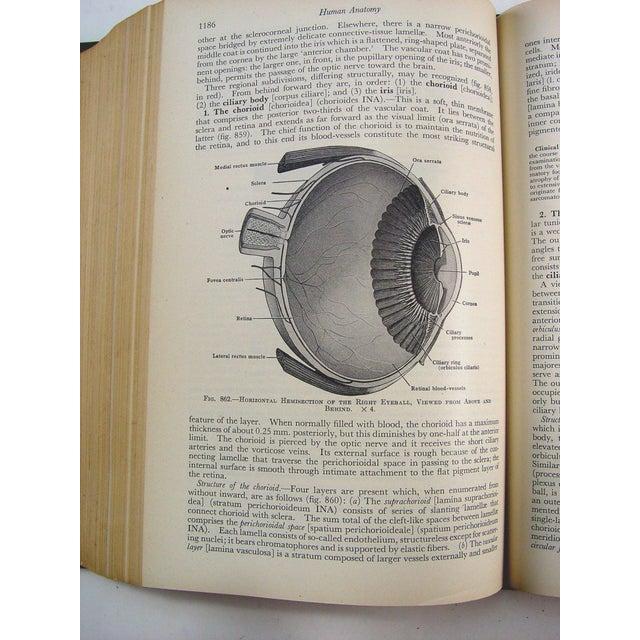 Human Anatomy Book, 1947 - Image 9 of 10