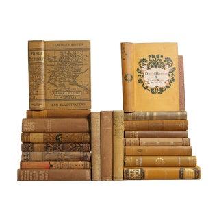 Ornate Honey Antique Book Set - Set of 20