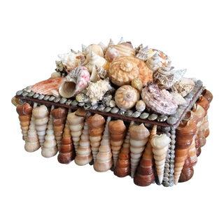 Large Seashell Box