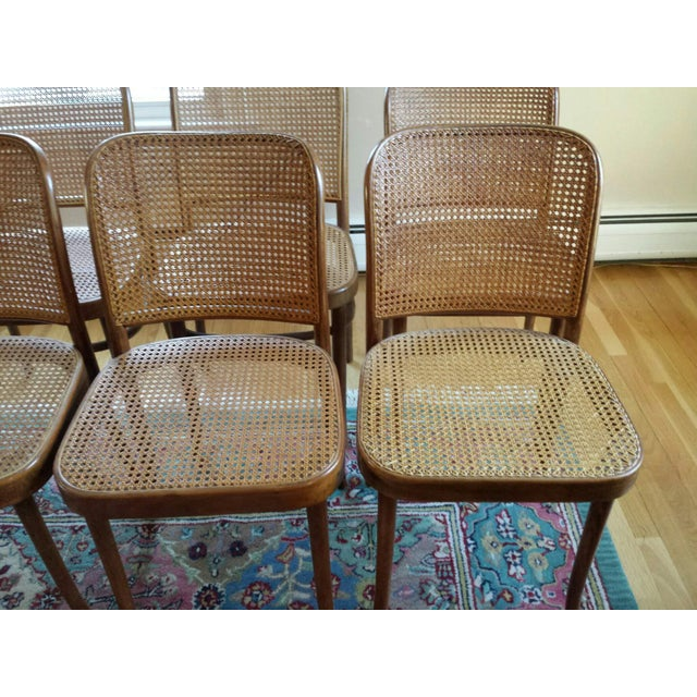 Image of Thonet Bentwood Prague MCM Caned Chairs - S/7