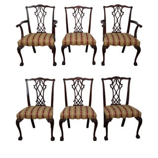 Mahogany Chippendale Ball & Claw Dining Chairs - 4