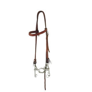 Vintage Western Bridle and Bit