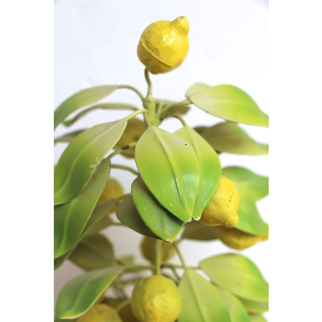 Italian Tole Lemon Tree Topiary Chairish