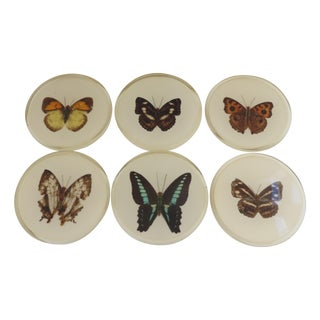 Butterfly Bar Coasters - Set of 6