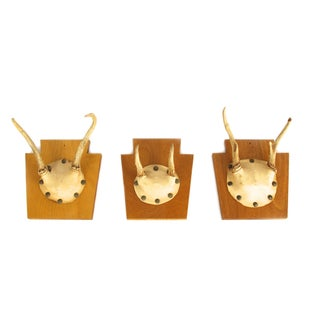 Keystone Antlers - Set of 3