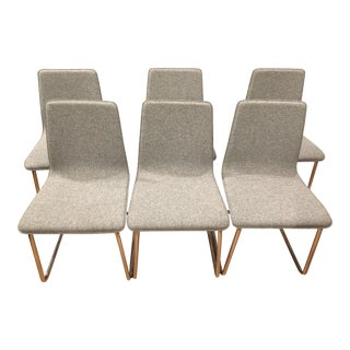 Contemporary CB2 Tweed Breuer-Style Dining Chairs - Set of 6