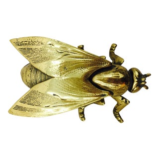 Vintage Brass Insect Box