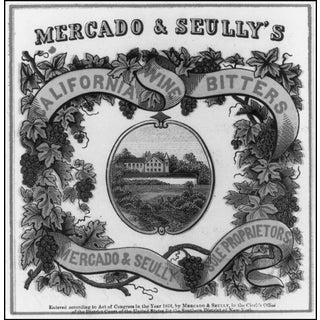 1865 Bitters Advertisement Print