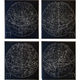 19th C. Celestial Charts - Set of 4