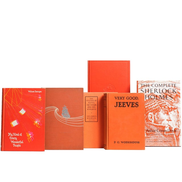 Image of Vintage Tangerine Classic Books - Set of 20