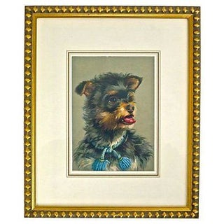 Vintage Framed Terrier Dog Engraving