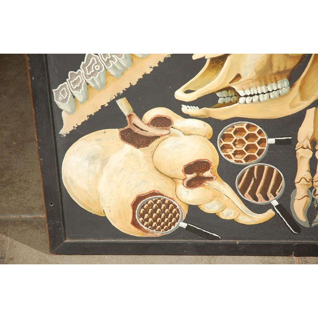 Large Painting Illustrating Elements of a Deer - Image 10 of 10