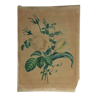 Antique Print of Roses and Tulips