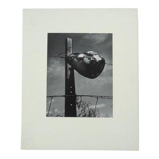 "Rustic Modernist ""Pot & Post"" Photograph"
