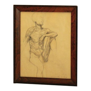 Nude Male Drawing