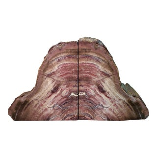 Large Petrified Wood Bookends - a Pair