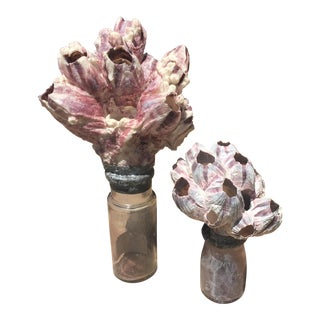 Pink Coral Topped Vintage Bottles - A Pair