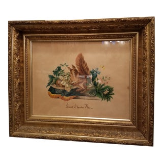 "19th Century French ""Fenrenil Chasselas Noix"" Squirrel Watercolor Painting"