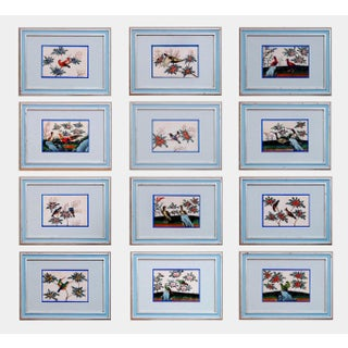 China Trade Set of Twelve Pith Paper Paintings of Birds, Circa 1840-60.