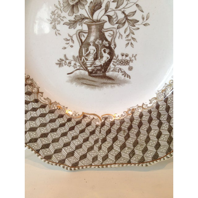 Brown Spode Portland Vase Pattern Luncheon Set - Image 5 of 10
