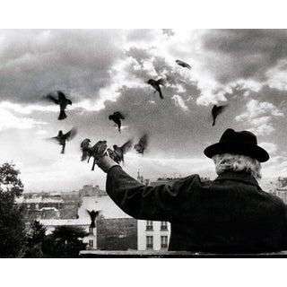 Monsieur V. Photograph