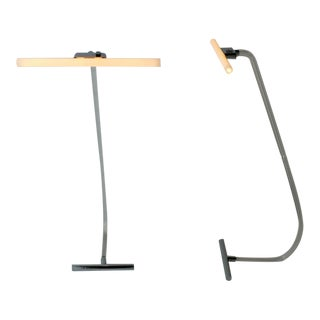 Rare Crylicord Floor Lamps
