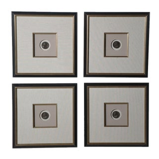 Set of Eight Framed Bronze Coins of Roman Emperors, Stamped & Dated