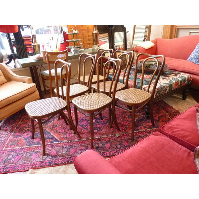 Vintage Bentwood and Cane Cafe Dining Chairs - Set of 6 - Image 8 of 10