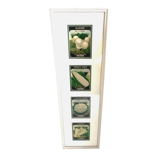 Framed-Mounted Antique Seed Packets - Set of 4