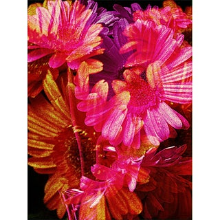 """Suga Lane - """"For You"""" Limited Edition Contemporary Floral Print"""