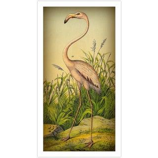 Vintage 'Flamingo' Archival Print