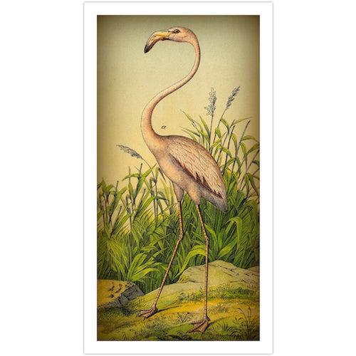 Vintage 'Flamingo' Archival Print | Chairish