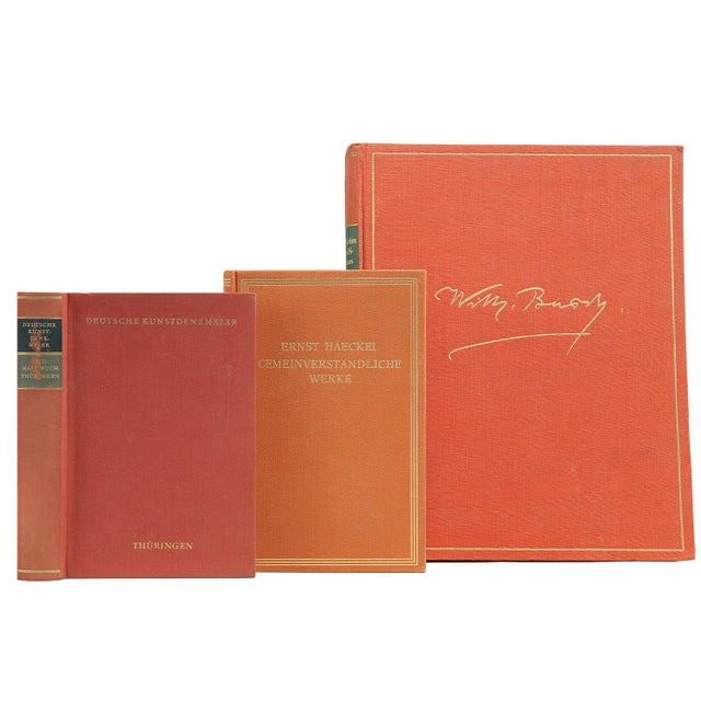 Tangerine & Melon German Mixed Books - Set of 16 - Image 2 of 2