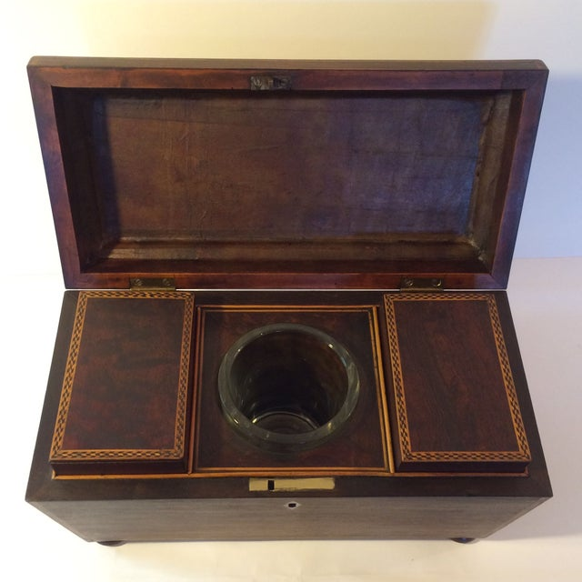 Image of English Regency Triple Tea Caddy