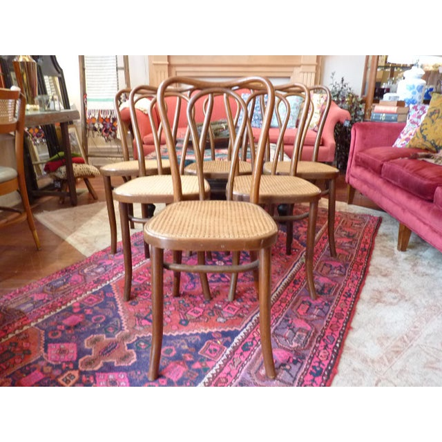 Vintage Bentwood and Cane Cafe Dining Chairs - Set of 6 - Image 10 of 10