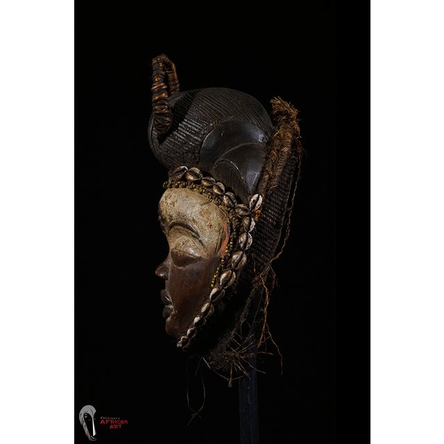 Punu African Tribal Mask from Gabon - Image 5 of 8