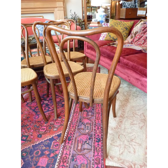 Vintage Bentwood and Cane Cafe Dining Chairs - Set of 6 - Image 6 of 10