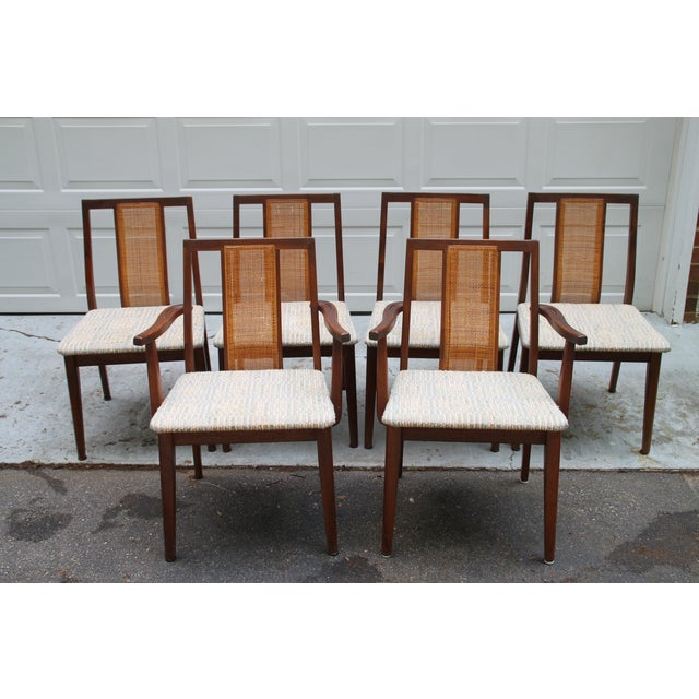 Mid-Century Hibriten Cane Back Chairs - Set of 6 - Image 2 of 11